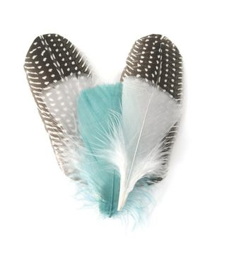 Twig feathers
